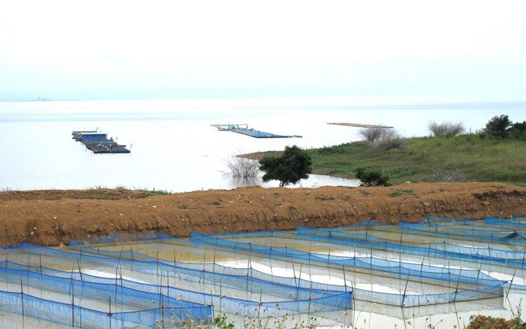 Aquaculture 3